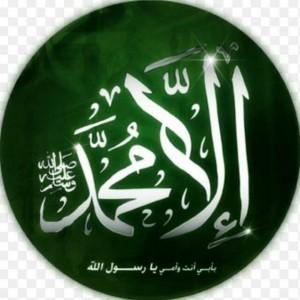 mohamedh's avatar