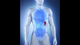 Spleen Pain Symptoms