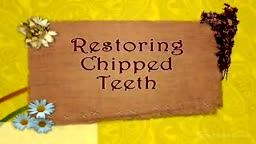 Restoring Chipped Teeth