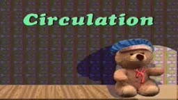 Child: CVS examination
