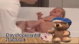 Developmental Reflexes