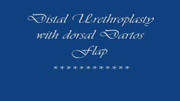 Distal Urethroplasty with Dorsal Dartos Flap