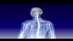 Multiple Sclerosis animation