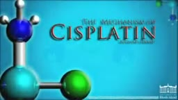 Mechanism of Cisplatin Anti-Cancer Drug