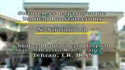 Sutureless laparoscopic radical Prostatectomy