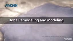Bone Remodeling and Modeling