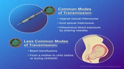 Transmission and Prevention of HIV and AIDS