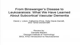 Binswanger's Disease