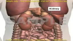 Kidney Function in Filtering Contrast